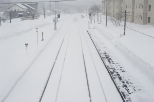 A winter storm has hit New England, causing coastal flooding and high winds and covering many areas in deep snow.  Image credit: photoeverywhere on freeimageslive.co.uk. Photo not of location.